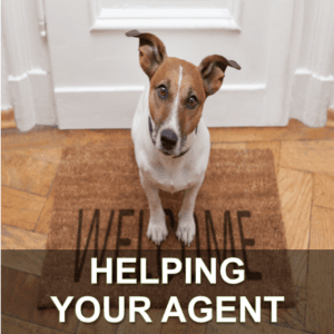 Help Your Agent