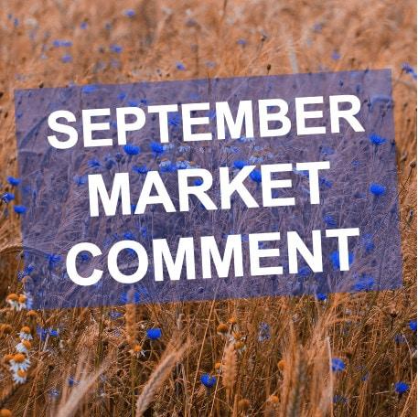 September 2020 Market Comment